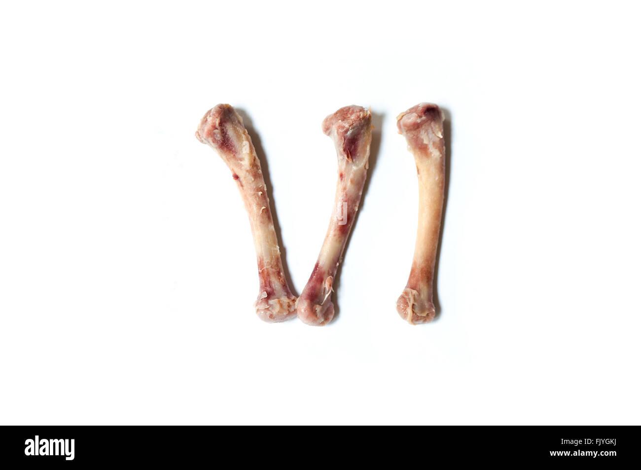 Chicken Skeleton Stockfotos & Chicken Skeleton Bilder - Alamy
