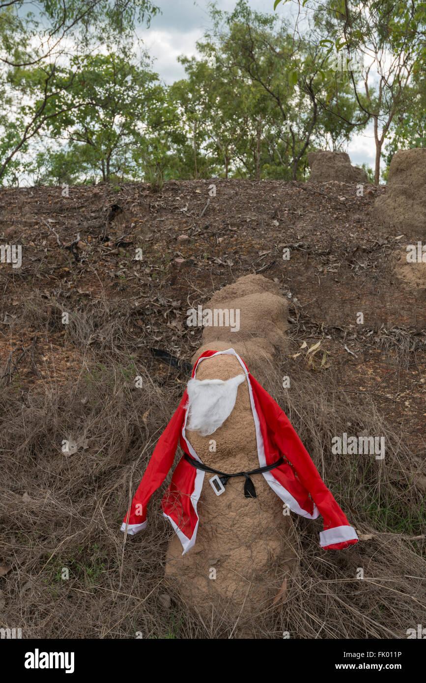 Termitenhügel verkleidet. Stockbild