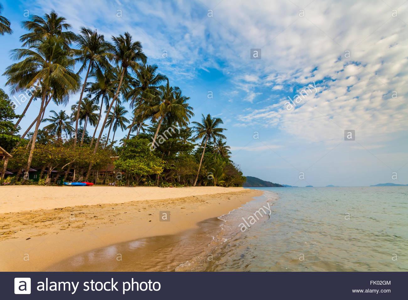 Tropische Landschaft mit Palmen und Sandstrand. Koh Chang. Thailand. Stockbild