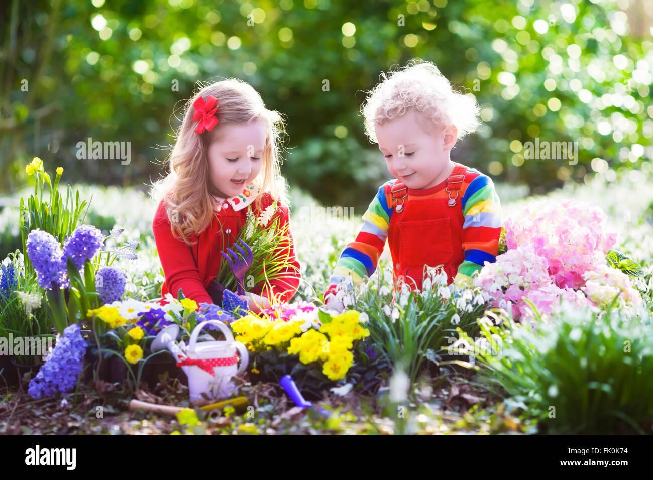 kinder pflanzen fr hlingsblumen im sonnigen garten kleine jungen und m dchen g rtner pflanze. Black Bedroom Furniture Sets. Home Design Ideas