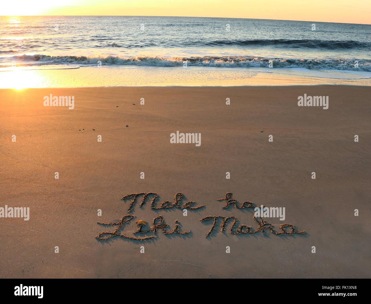 Frohe Weihnachten Hawaii.Mele Ka Liki Maka Bedeutet Frohe Weihnachten In Hawaii Stockfoto