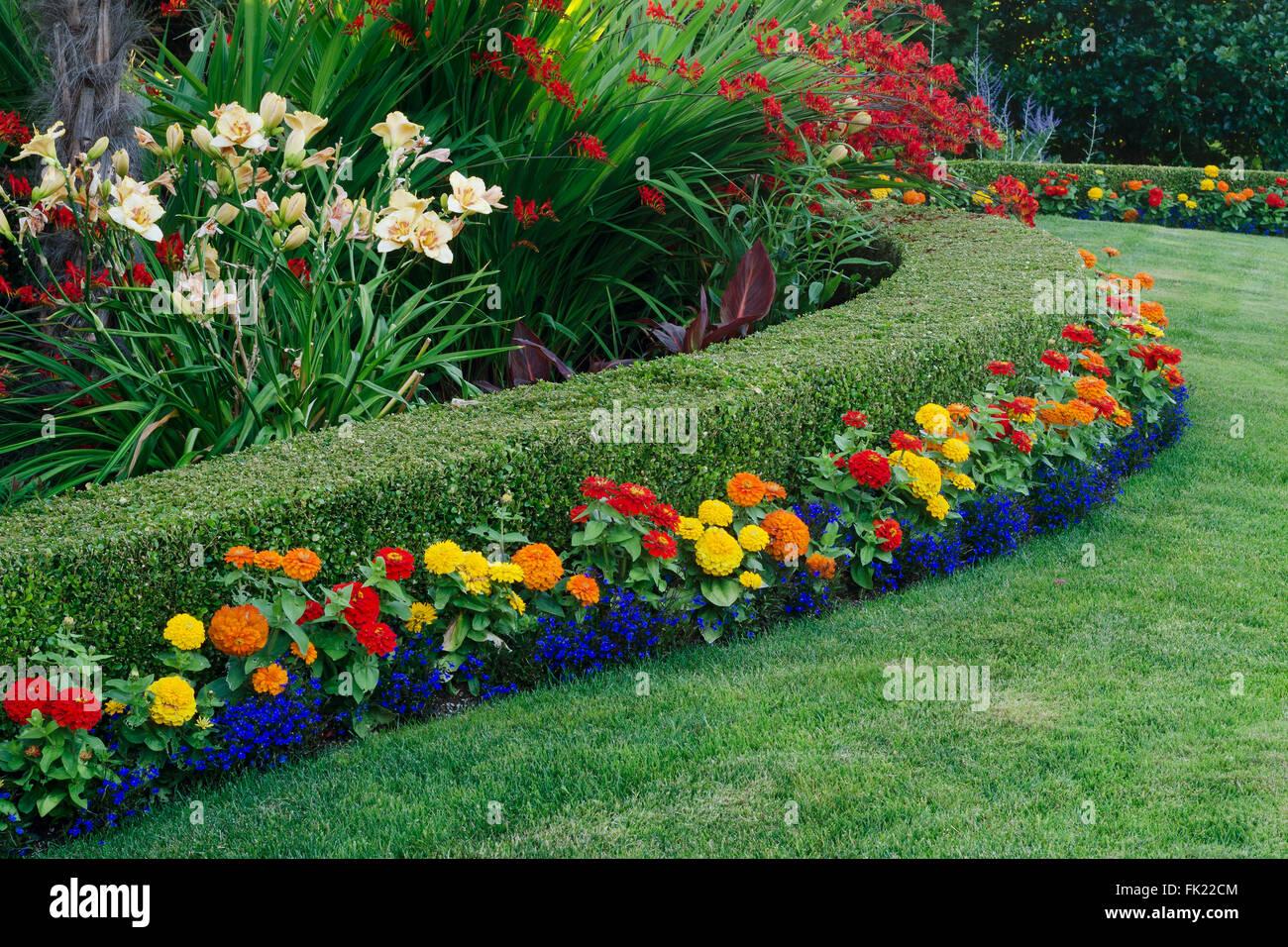 Ein Schöner Garten Display Mit Einer Geschwungenen Buchsbaum Hecke Umgeben  Von Einer Vielzahl Von Bunten Blumen.
