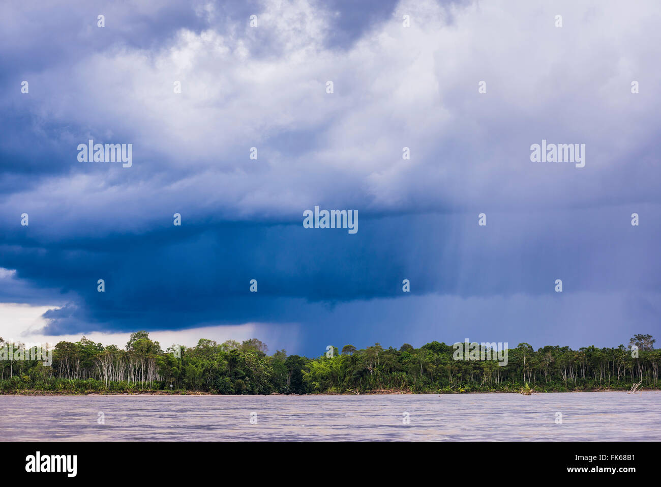 Amazonas-Regenwald Sturm, Coca, Ecuador, Südamerika Stockbild