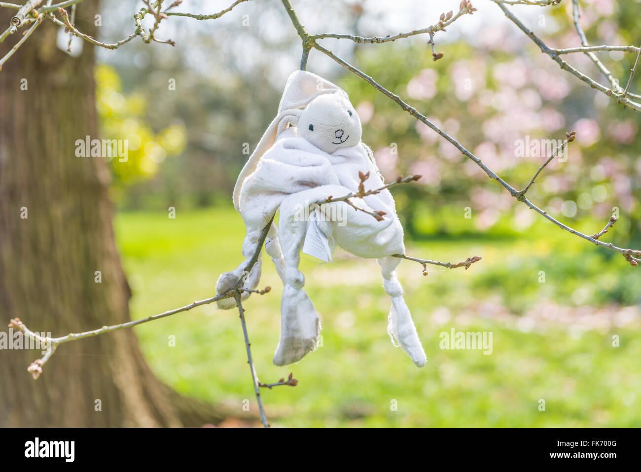 Verirrte Häschen Stofftier auf einen Baum-brunch Stockbild