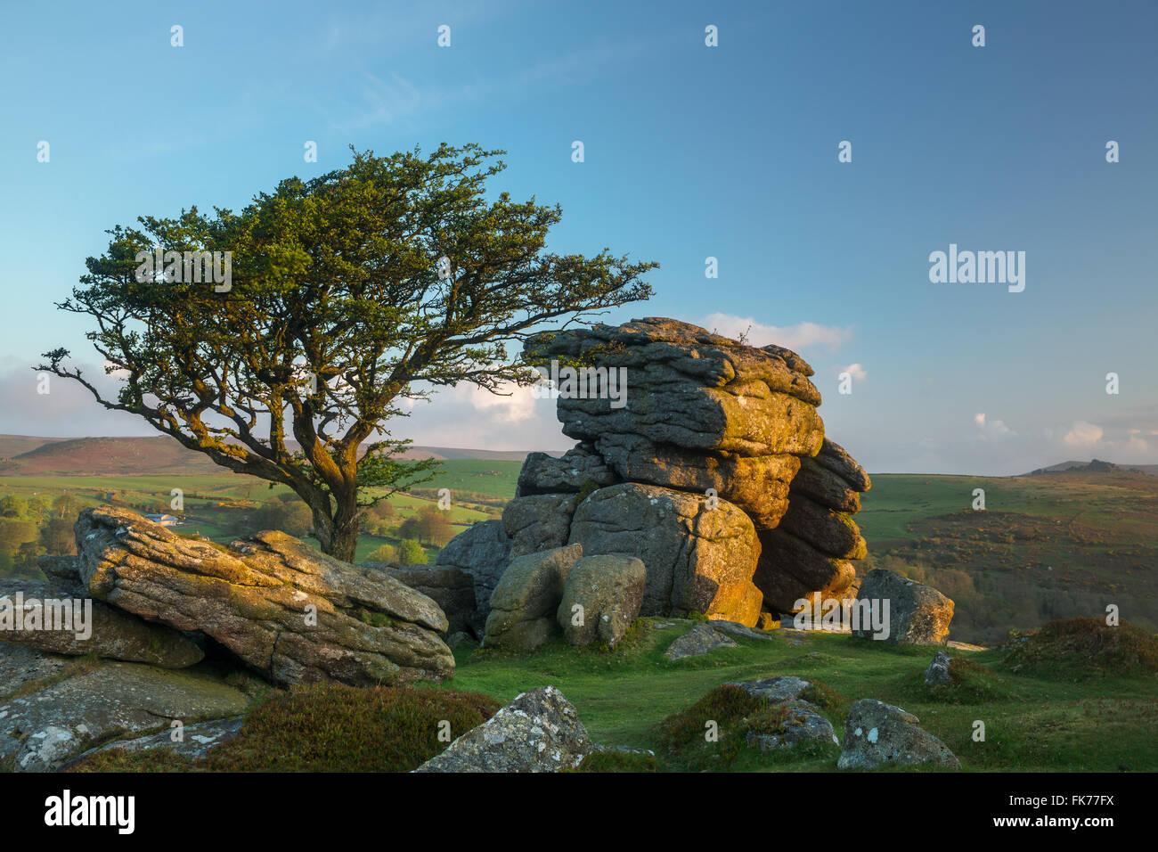 Sattel Tor, Dartmoor, Devon, England, Vereinigtes Königreich Stockbild