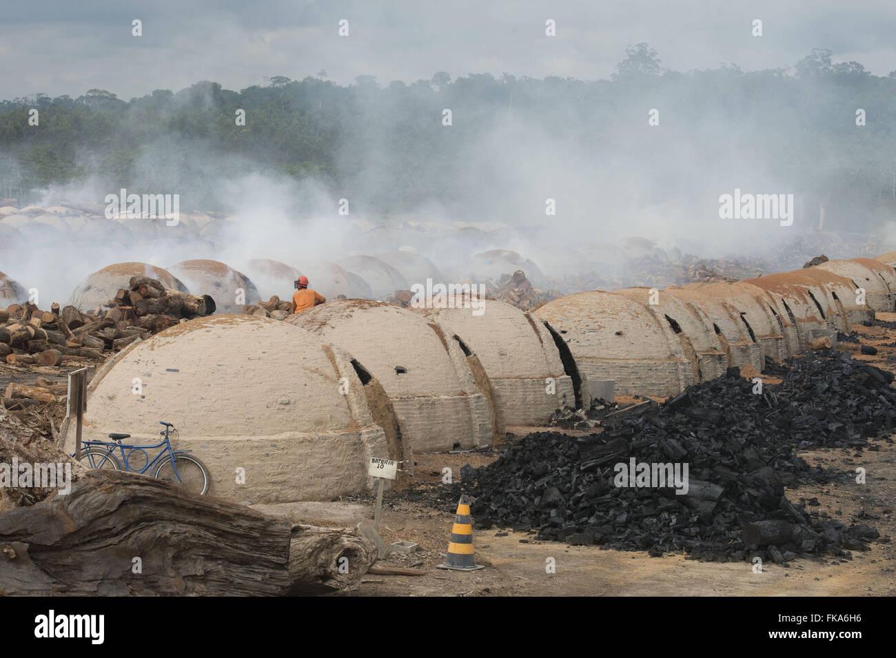 Produktion von Kohle für Stahl mit Hackschnitzel-Waldbewirtschaftung Stockbild