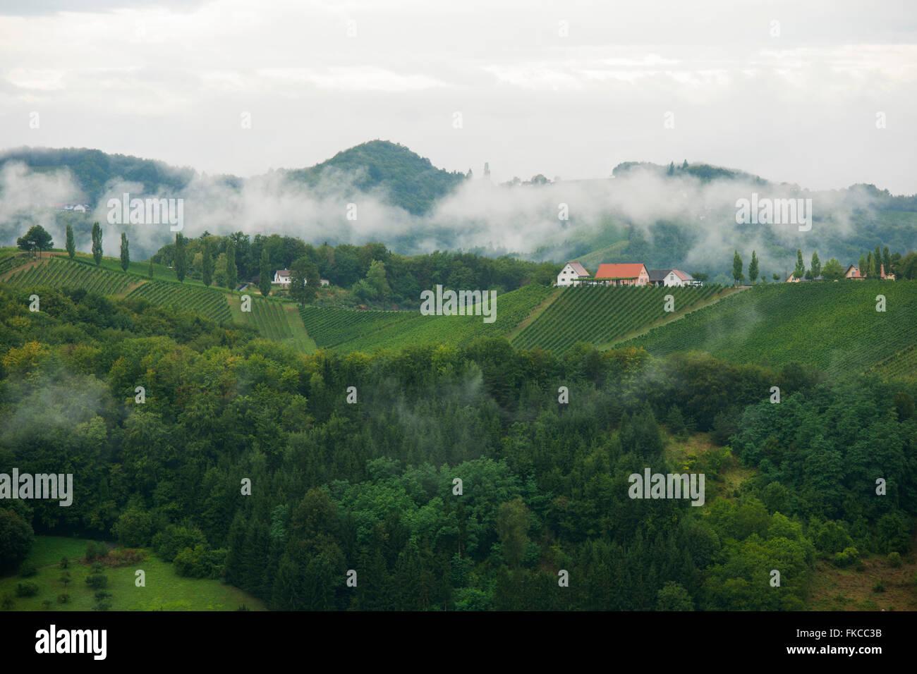 Österreich, Steiermark, Bezirk Leibnitz, Landschaft eine der Südsteirischen Weinstraße Südlich Stockbild