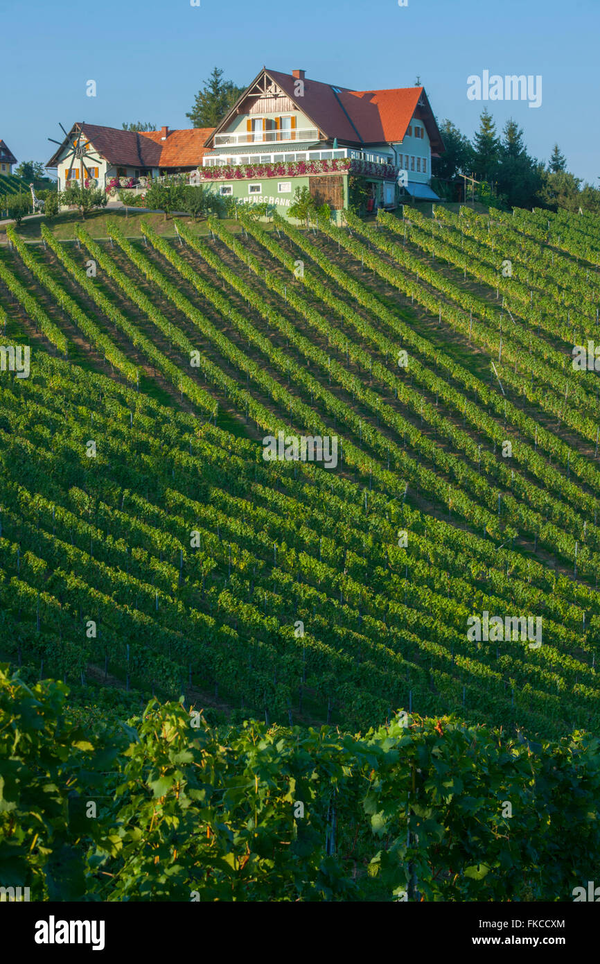 Österreich, Steiermark, Bezirk Leibnitz, eine der Südsteirischen Weinstraße Südlich von Gamlitz Stockbild