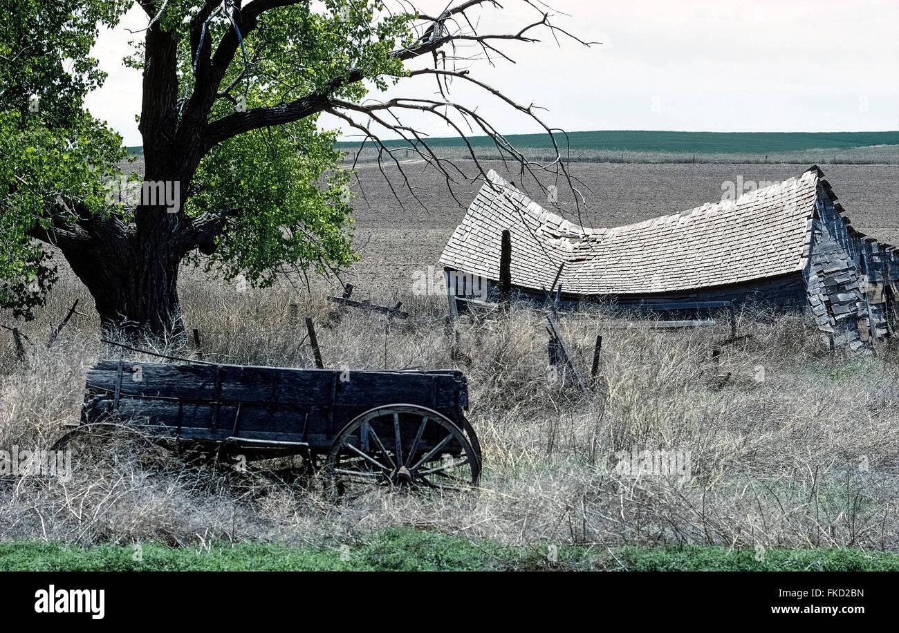 Eine reduzierte Holzhütte und einem verlassenen Bauernhof Wagen umgeben von Unkraut unter einem uralten Baum Stockbild
