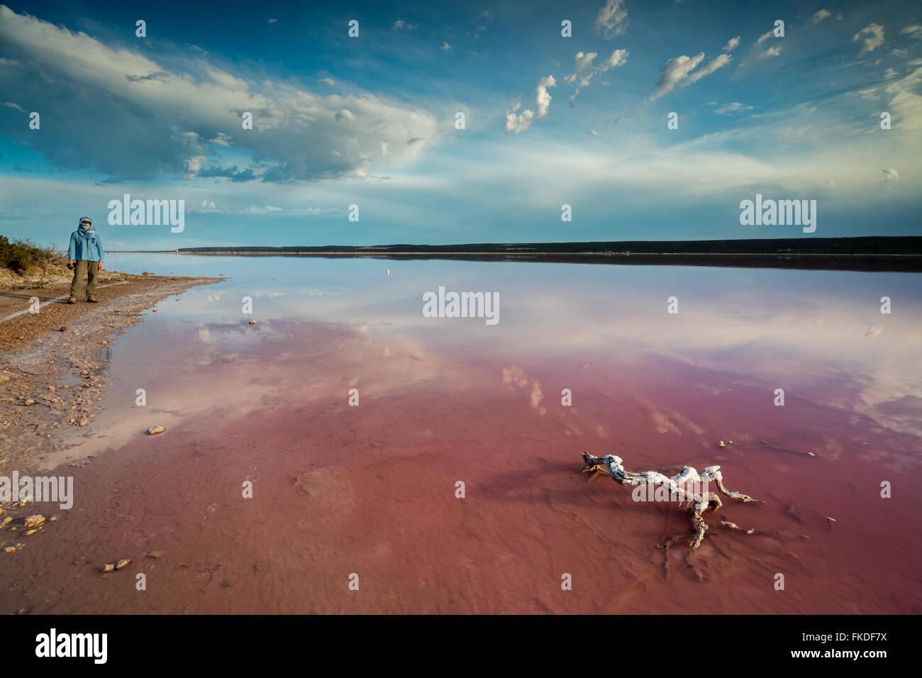 Wendy am Ufer der Lagune Rosa im Port Gregory, West-Australien Stockbild