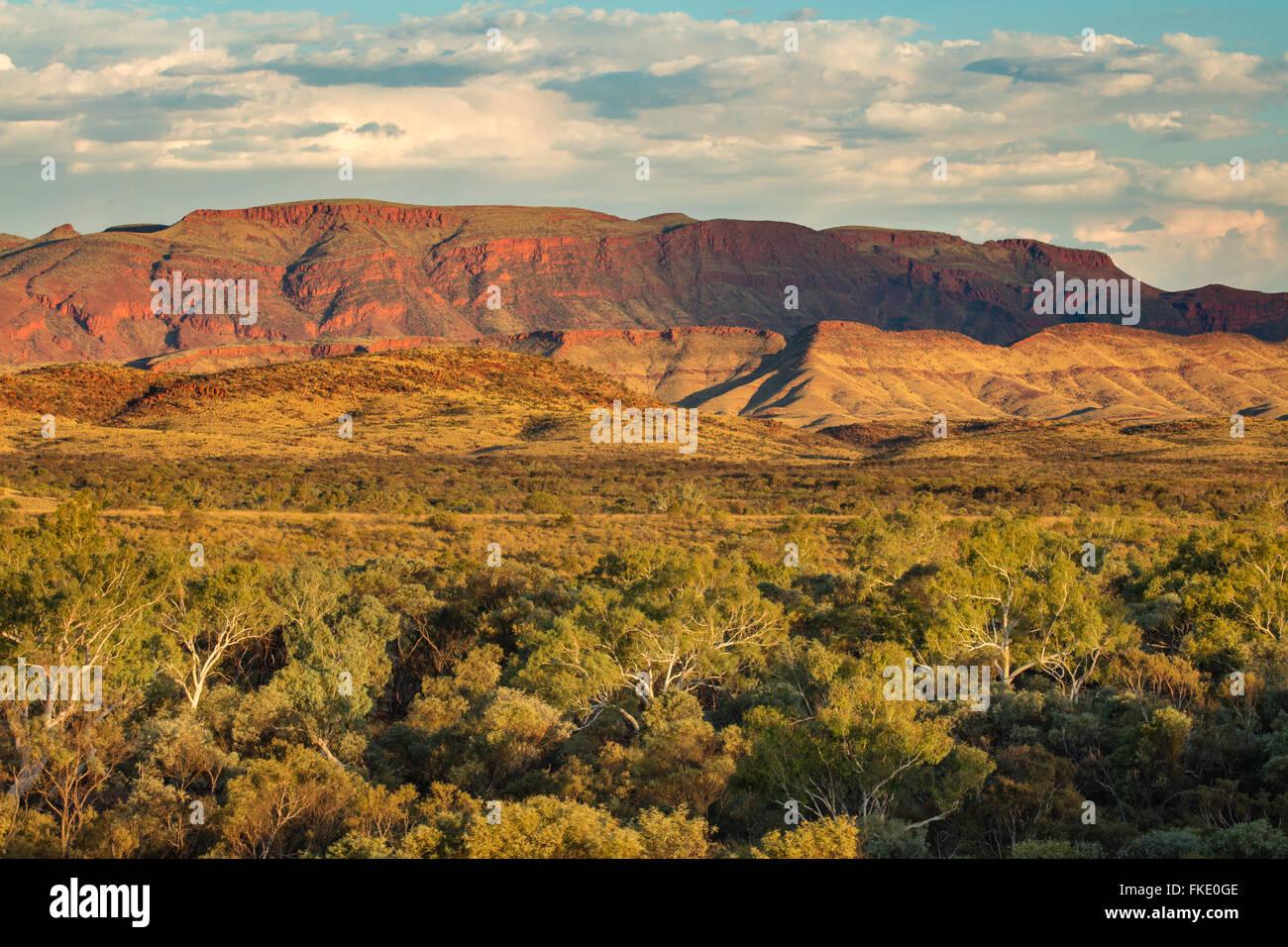 Pilbara, Western Australia, Australia Stockbild