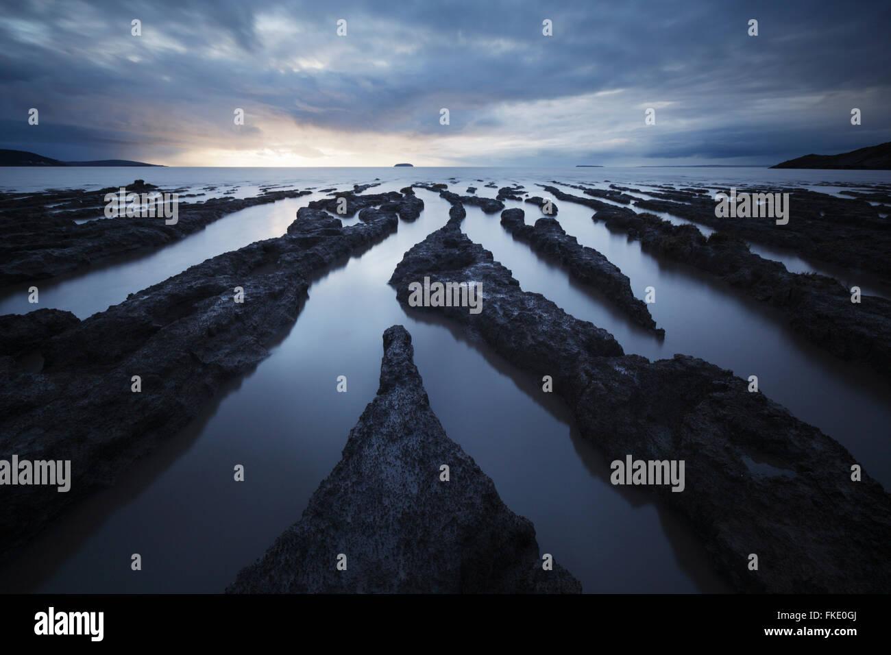 Wattwanderungen im Sand Bay. Halb unter Wasser bei hohen Neap-Gezeiten. Somerset. VEREINIGTES KÖNIGREICH. Stockbild