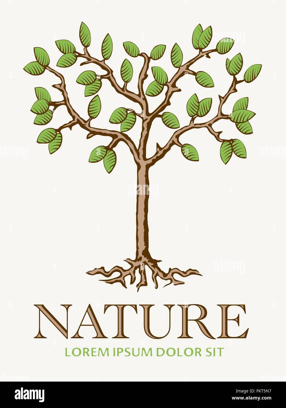 Beste Baum Ausgeschnittene Vorlage Bilder - Beispielzusammenfassung ...