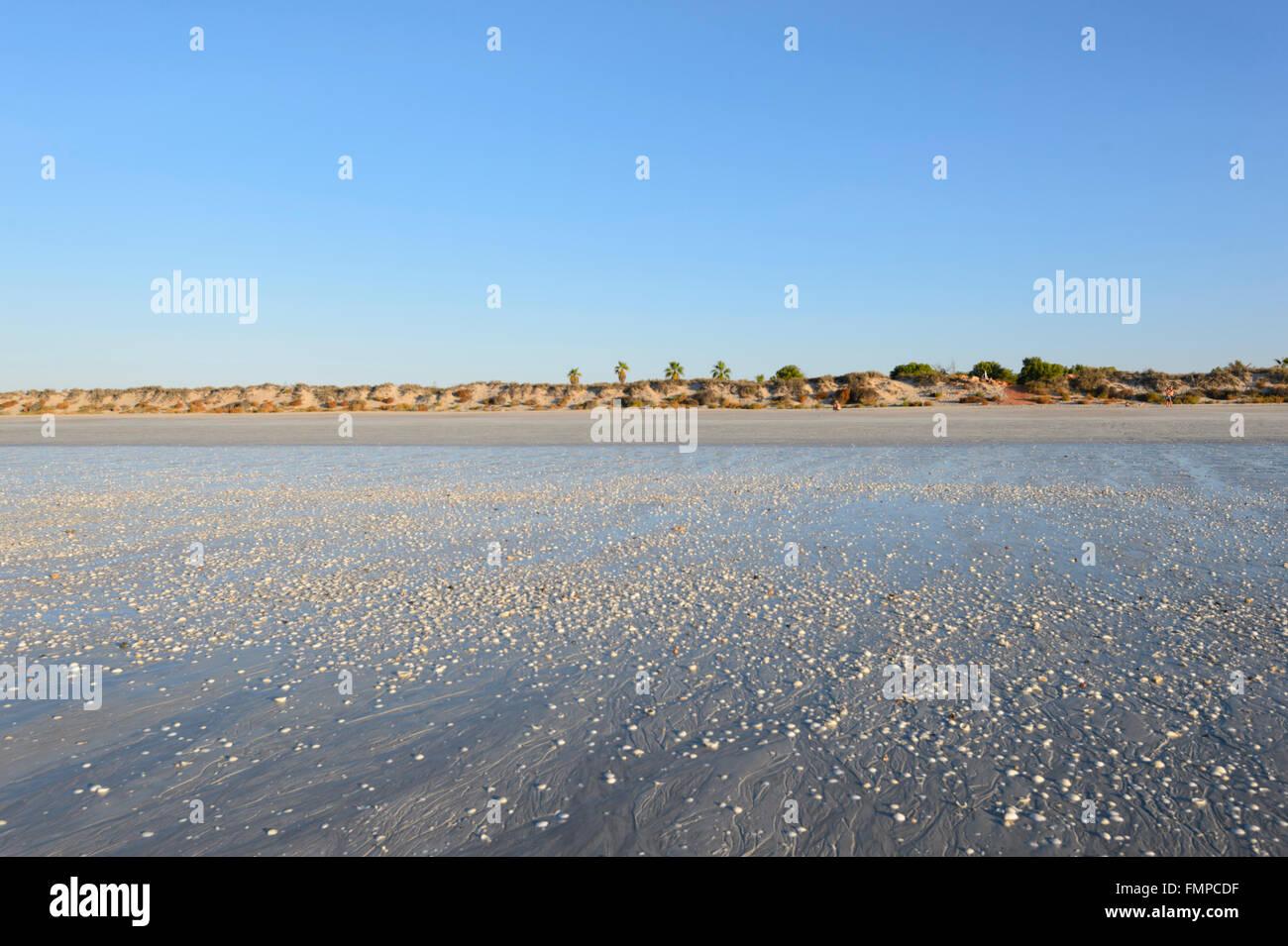 Eighty Mile Beach, Western Australia, WA, Australien Stockbild