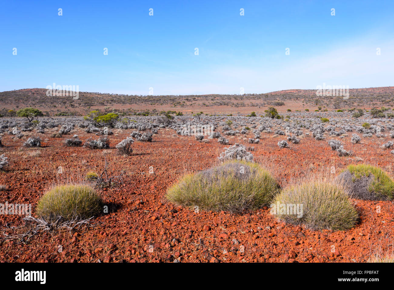 Outback in der Nähe von Lake Gairdner, South Australia, Australien Stockbild