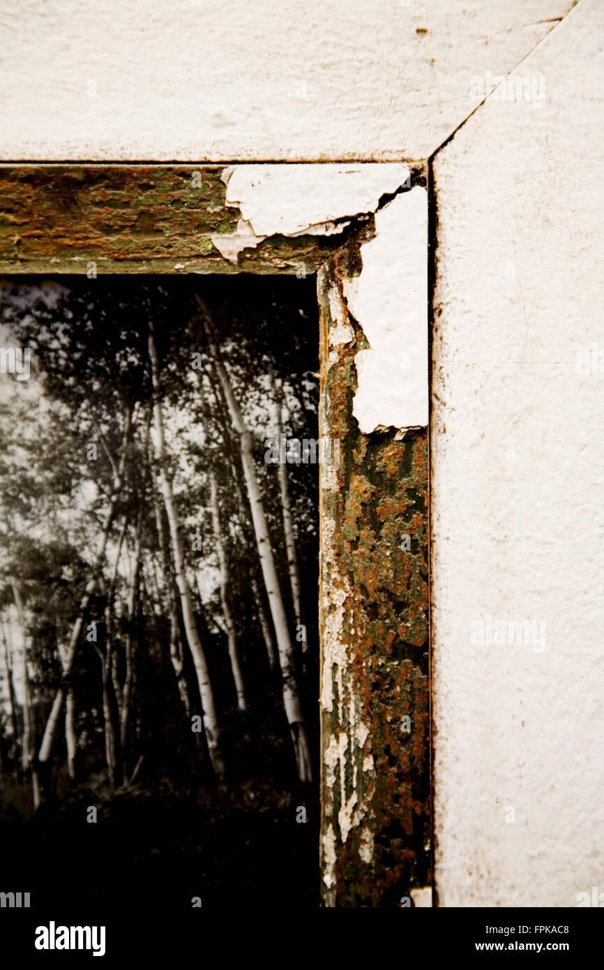 Ecke des einen digitalen Bilderrahmen, close-up, schwarz-weiß ...