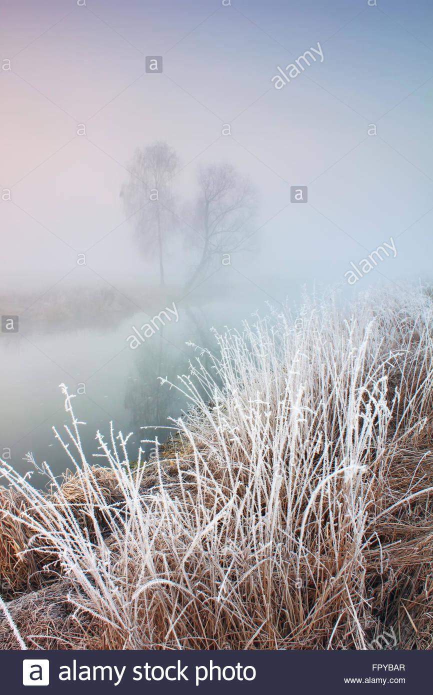 Nebligen Morgen mit Frost am Fluss im zeitigen Frühjahr Stockbild