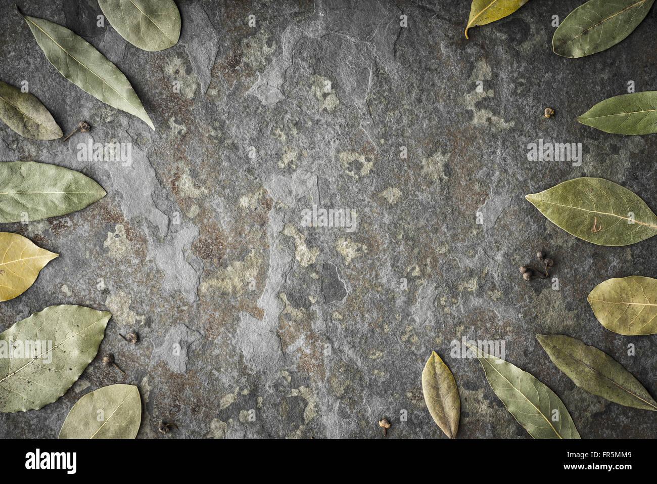 Blätter des Baumes Laurel auf den steinernen Tisch horizontal Stockbild