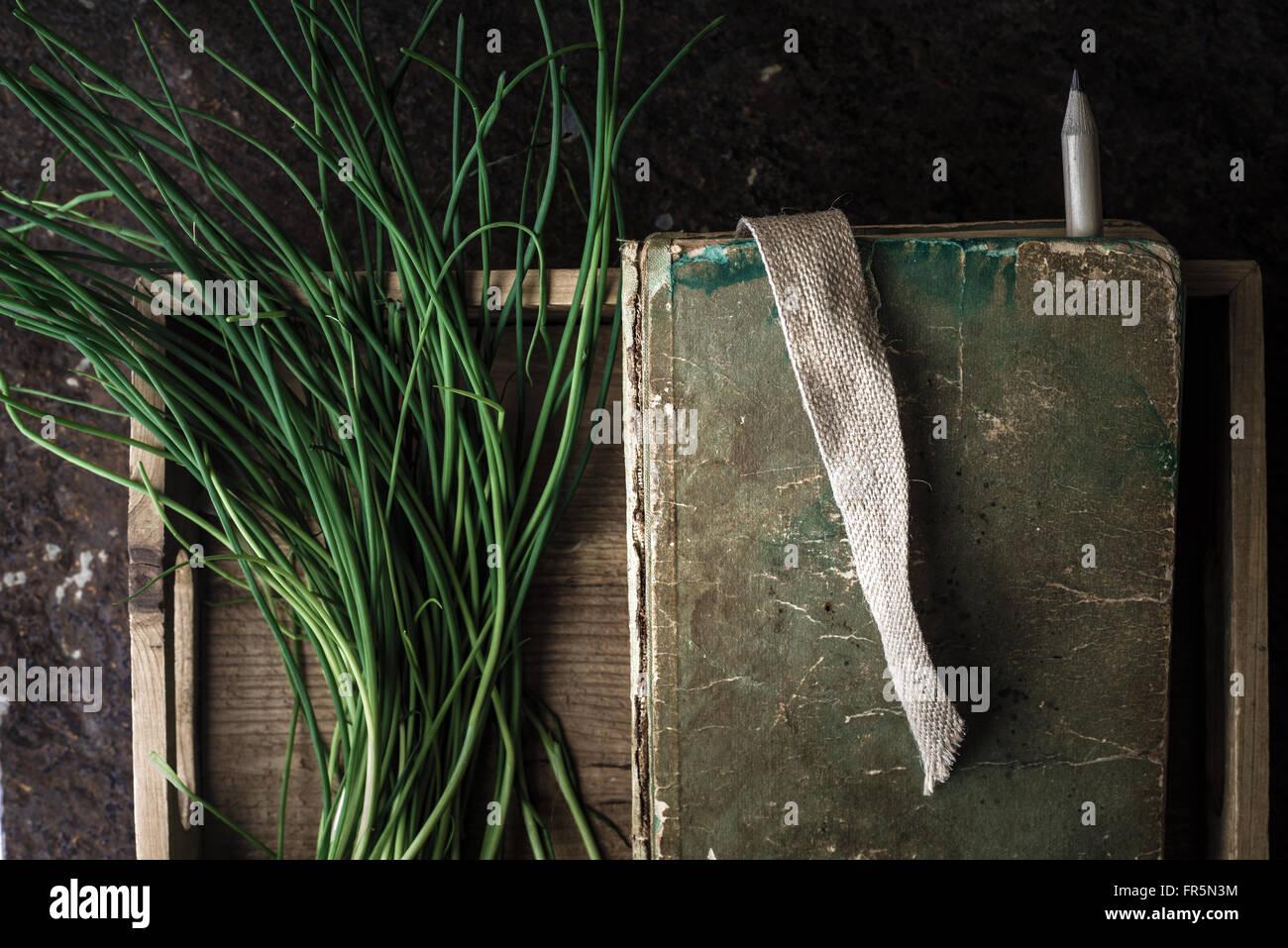Grüne Zwiebel Stiele und das Buch in einer Holzkiste, die horizontale Stockbild