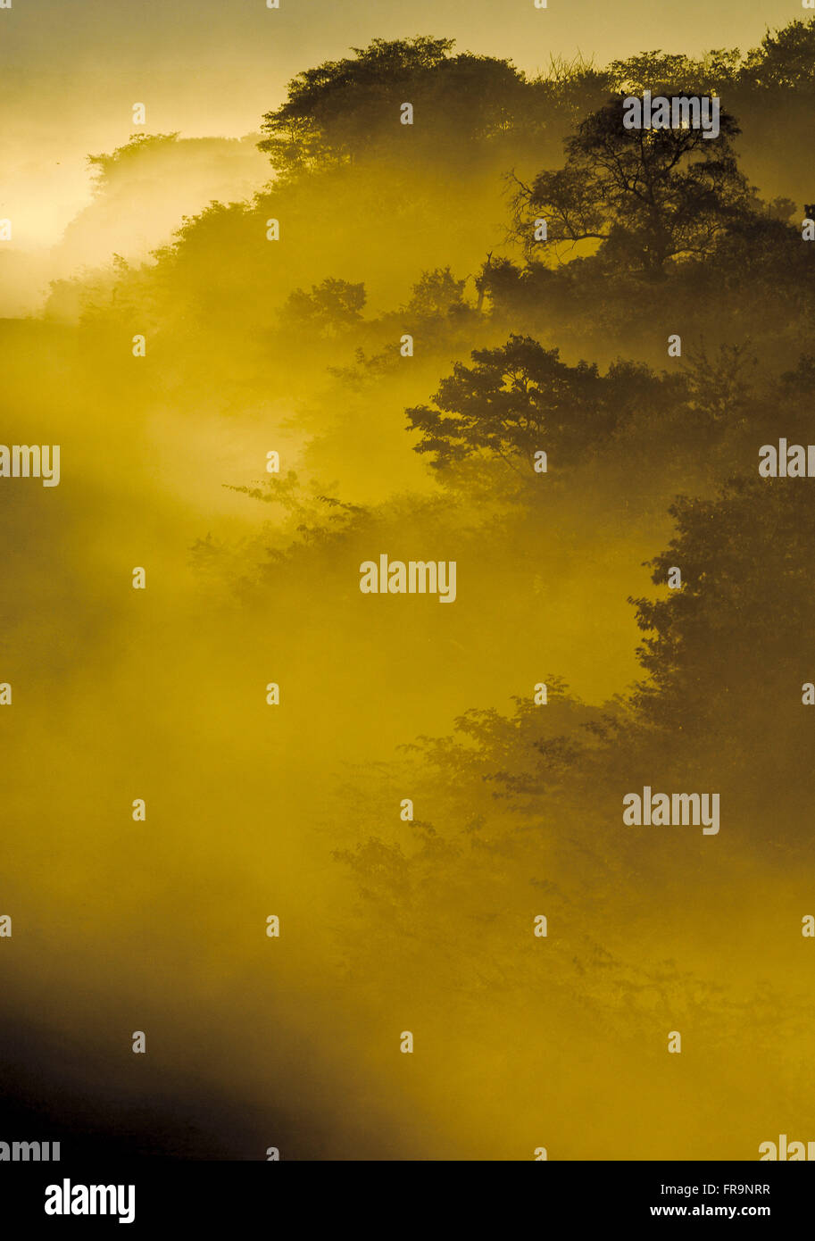 Nebel aus Staub auf der Straße in der Abenddämmerung Stockbild
