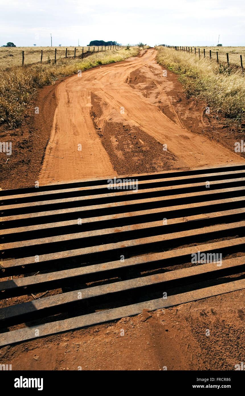 Feldweg mit Cattle Guard - Hindernis für den Durchgang von Tieren vor allem Rinder verhindern Stockbild