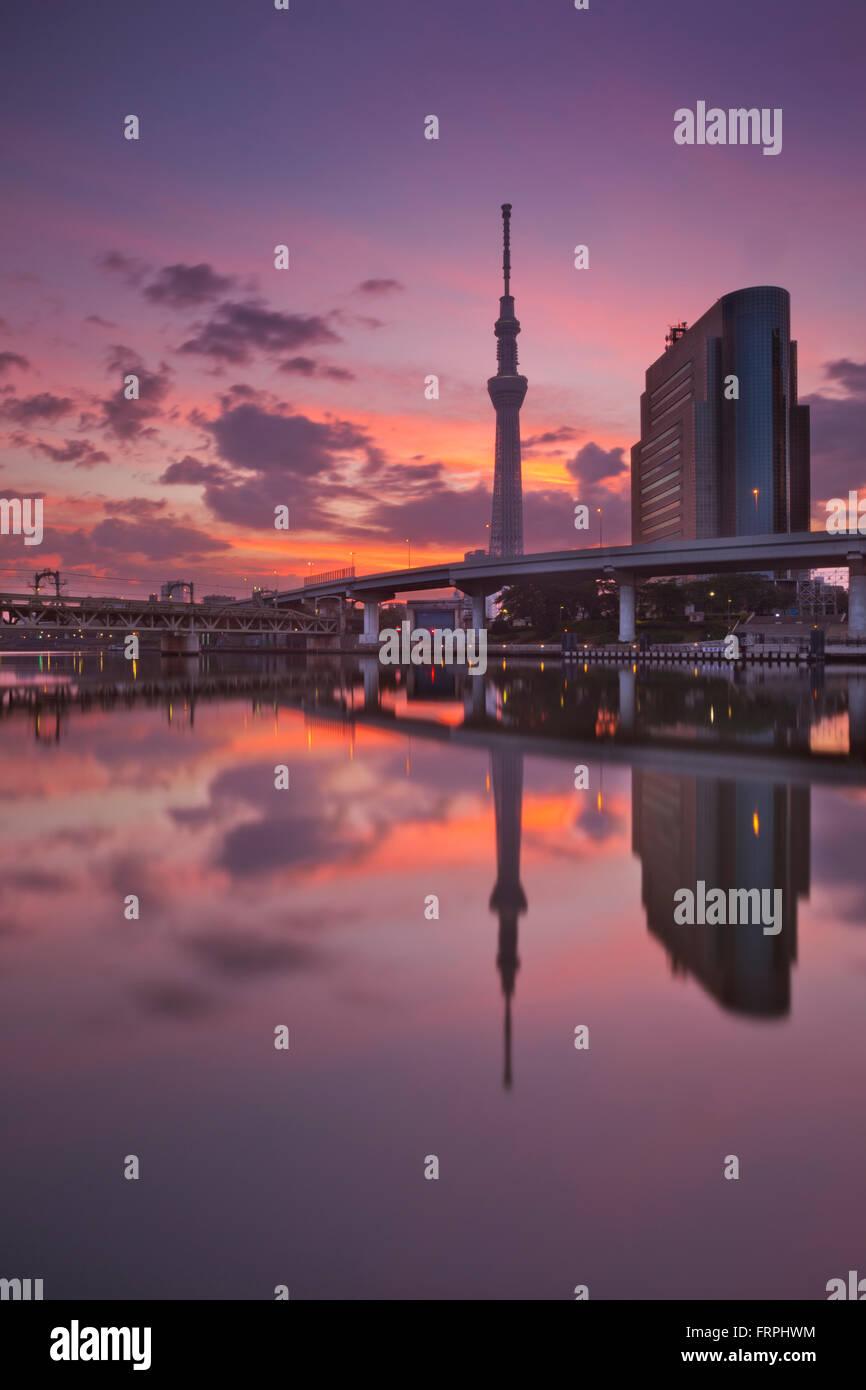 Tokyo Sky Tree in Tokio, Japan, spiegelt sich in dem Sumida-Fluss bei Sonnenaufgang. Stockbild