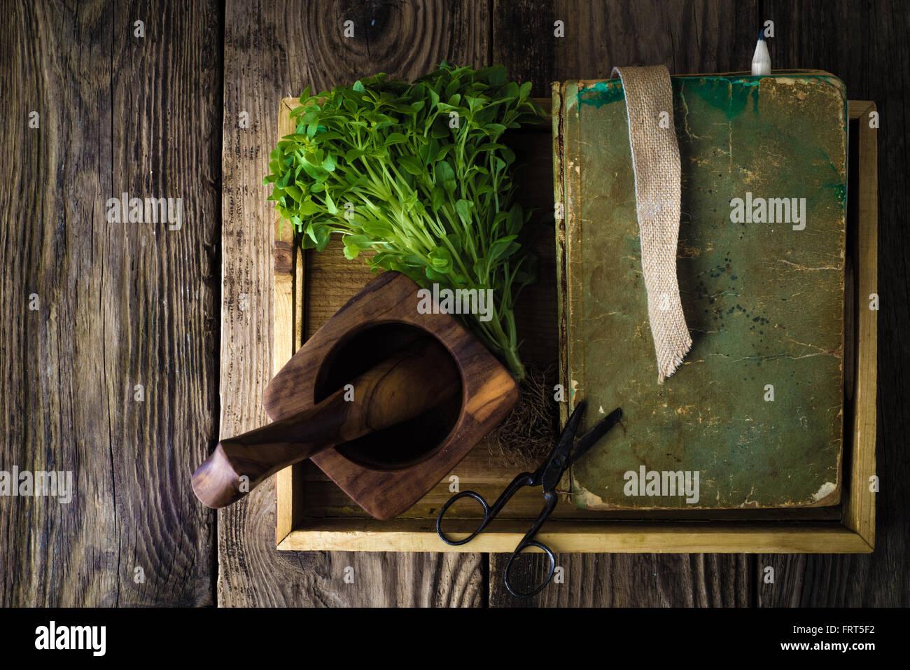 Holztablett mit Buch, grüner Basilikum und Schere Draufsicht Stockbild
