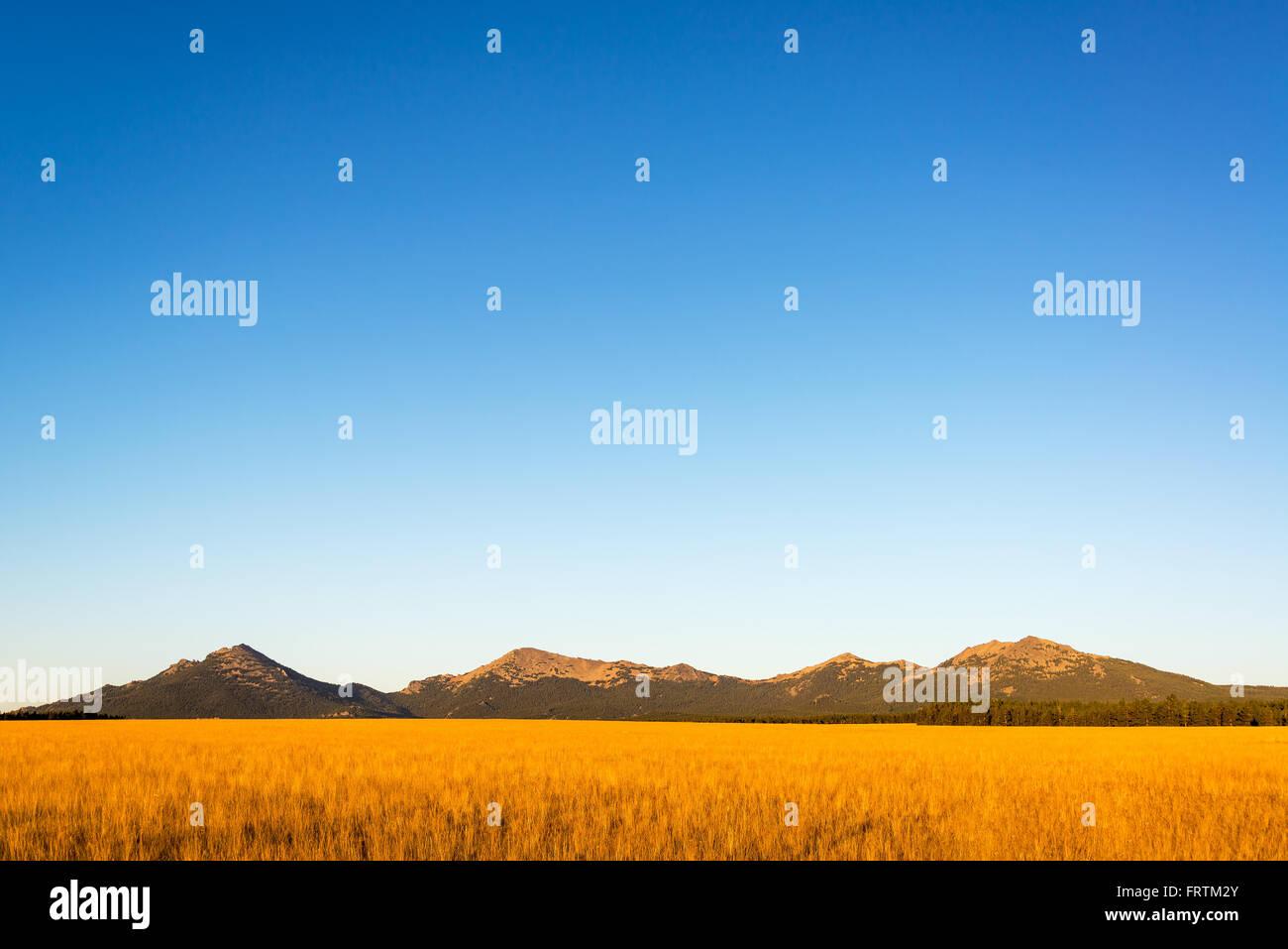 Bighorn Mountain Range in Wyoming in die schönen frühen Morgenlicht getaucht Stockbild