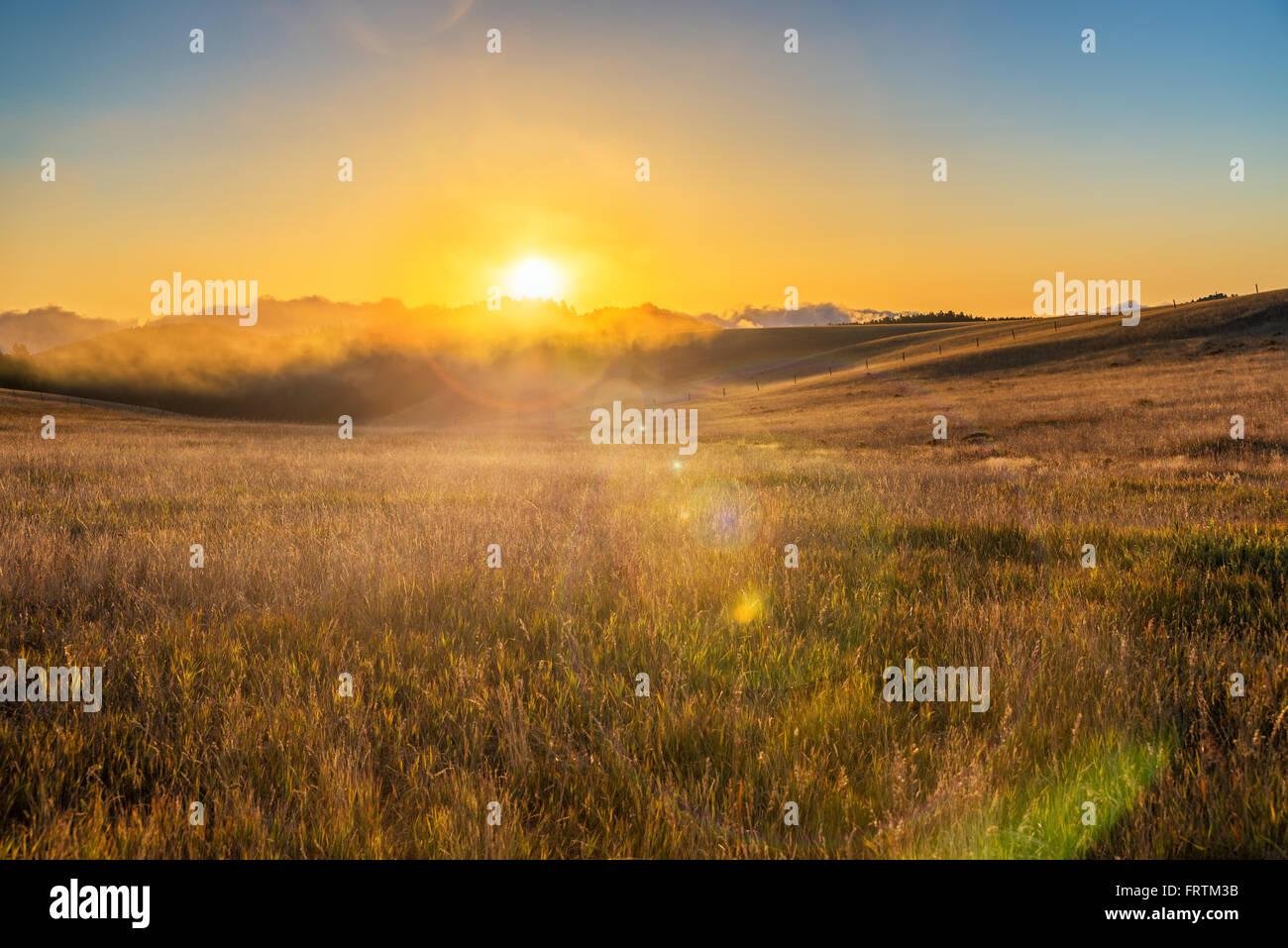 Sunrise und Lens flare über ein Feld in der Bighorn Mountain Range in der Nähe von Buffalo, Wyoming Stockbild