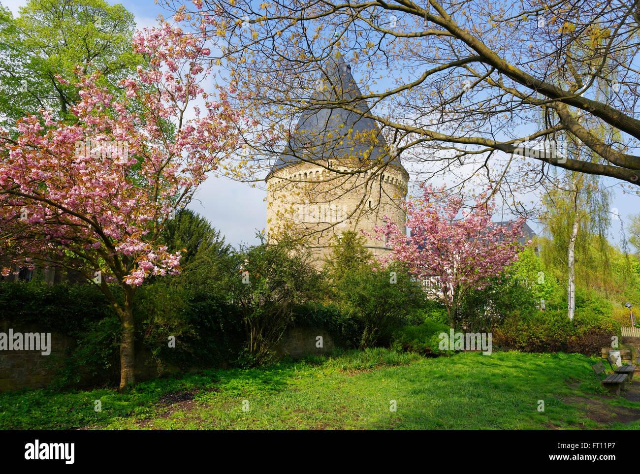Breites Tor, Goslar, Niedersachsen, Deutschland Stockbild