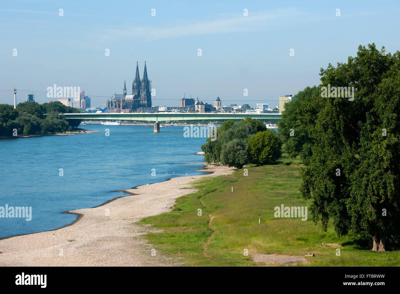 deutschland koln blick von der muhlheimer brucke auf das linke rheinufer mit strand und blick zum kolner dom