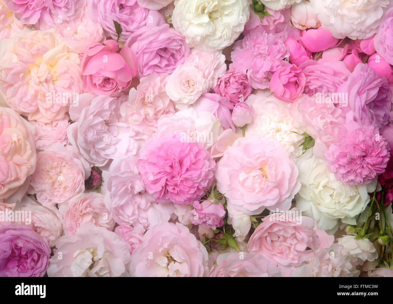 Vintage Hochzeitsblumen Stockfotos Vintage Hochzeitsblumen Bilder