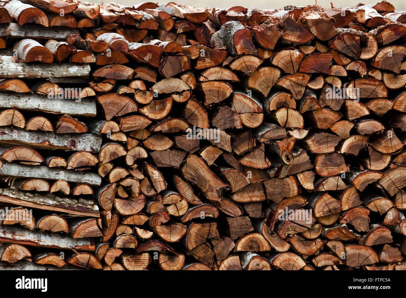 Schneiden Sie Baumstämme für den Verzehr Stockbild