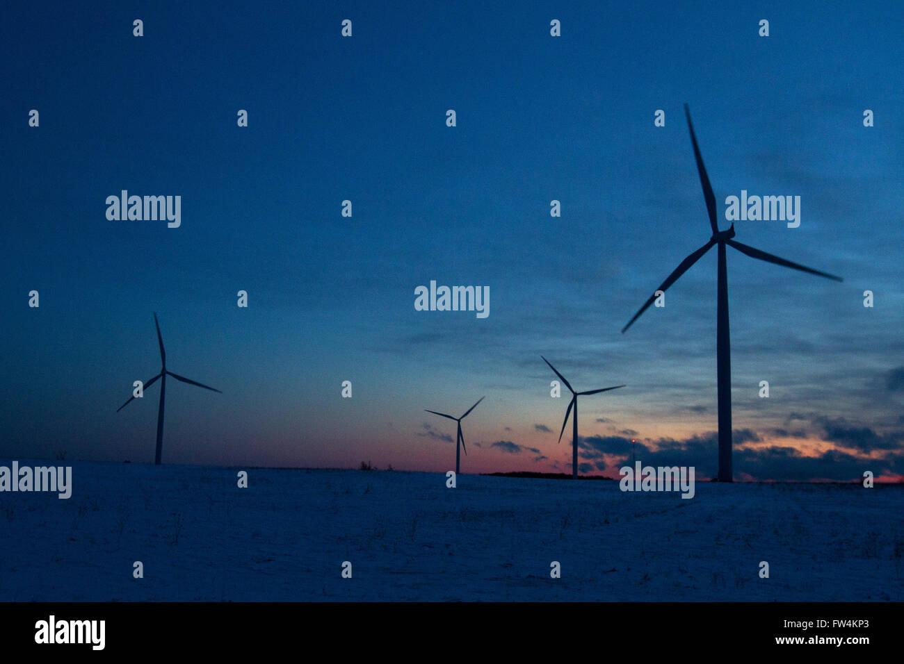 Windkraftanlagen kurz vor Sonnenaufgang auf Wolfe Island in der Nähe von Marysville, ont., auf Samstag, 23. Stockbild