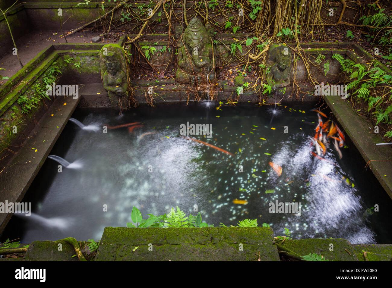Bad in der Heiligen Frühling Tempel, Heiligtum der Heiligen Affenwald, Ubud, Bali, Indonesien Stockbild