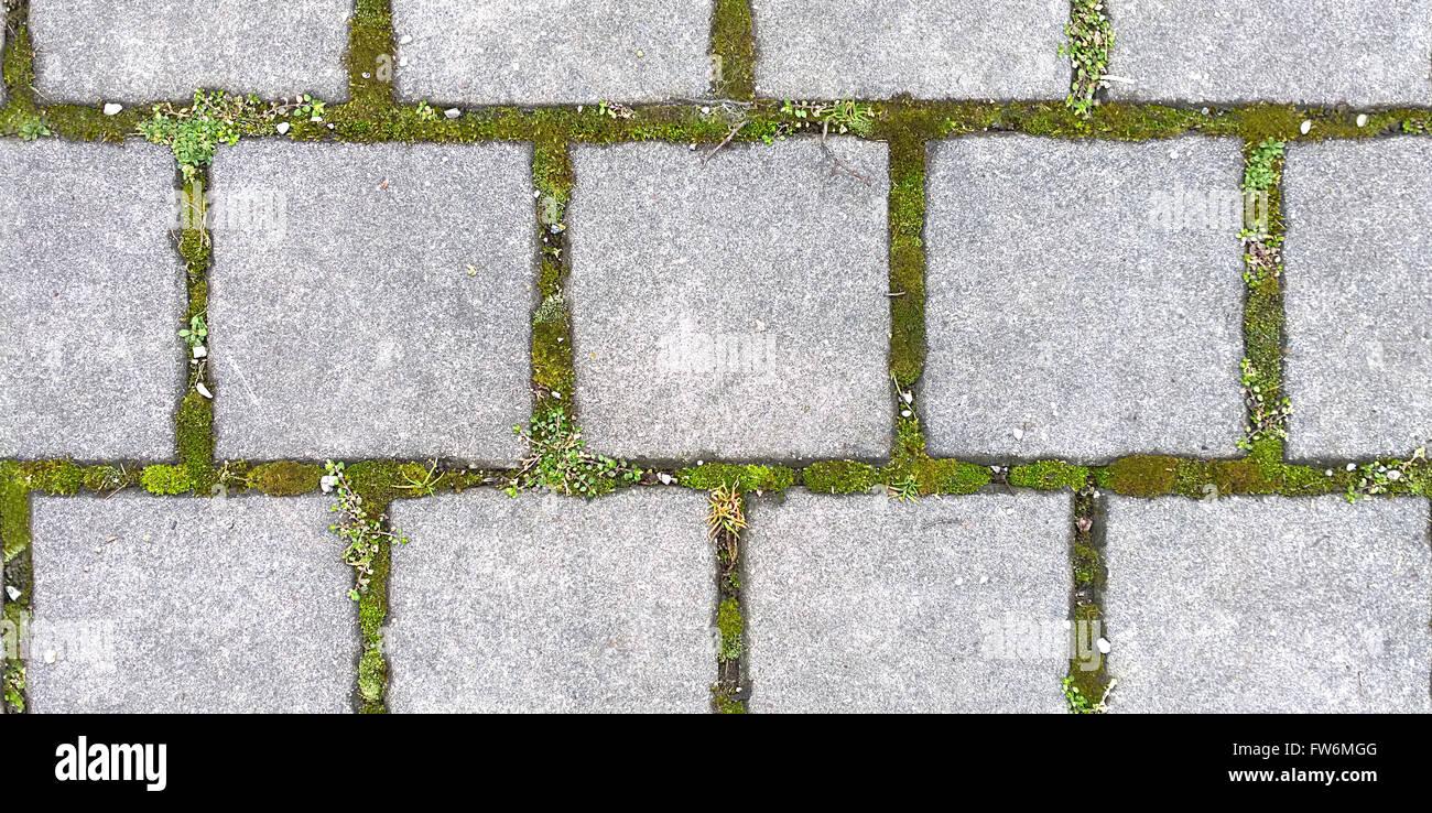 Hd Nahtlose Textur Blockieren Viereckigen Stein Pflaster