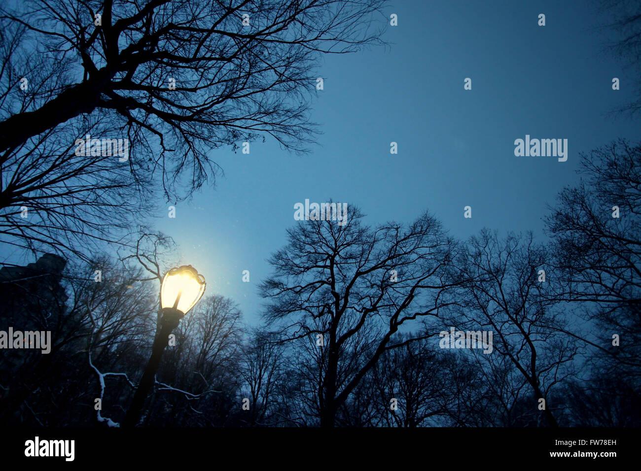 Central Park Himmel bei Nacht Stockfoto