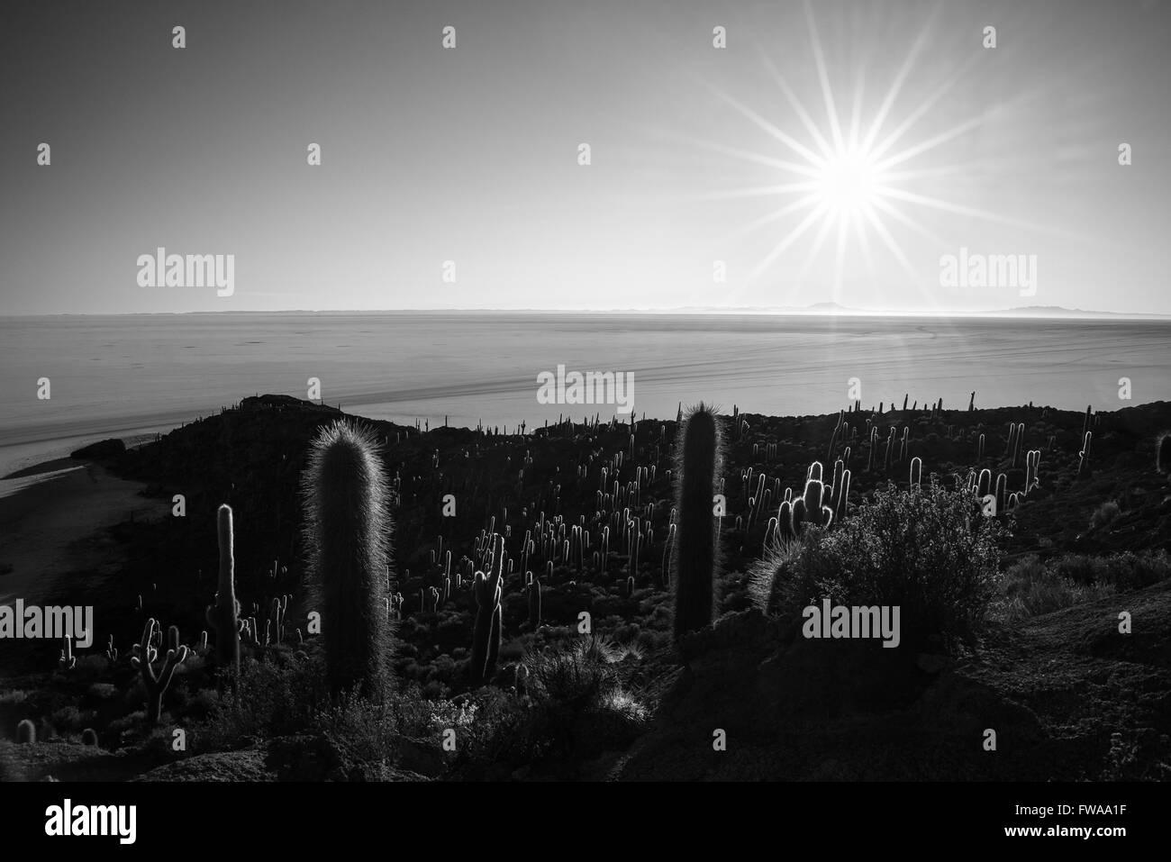 Die Sonne-Stern am Horizont über die majestätischen Uyuni Salz flach, unter das wichtigste Reiseziel in Stockbild