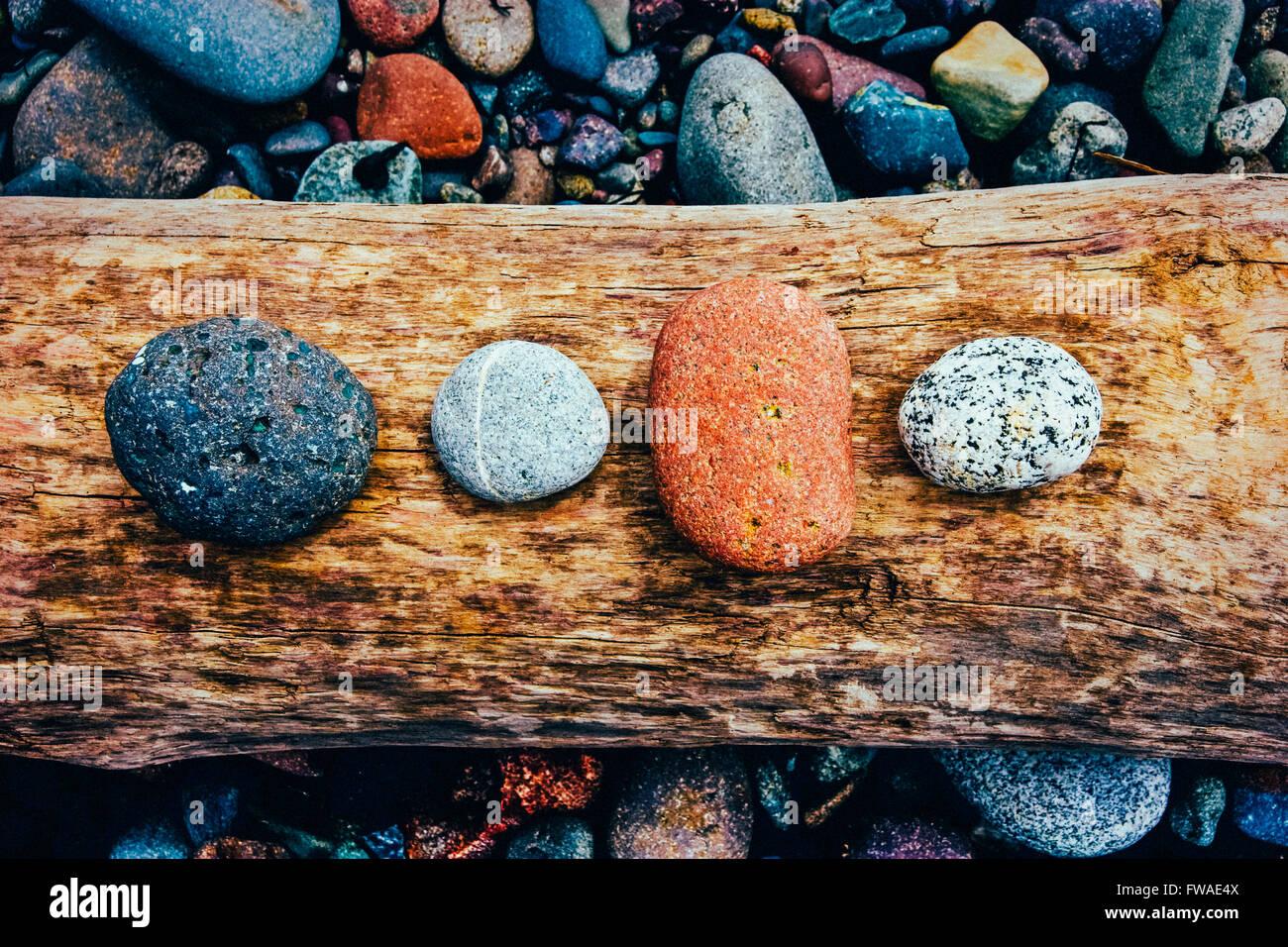 Bunten Steinen auf Treibholz Stockbild