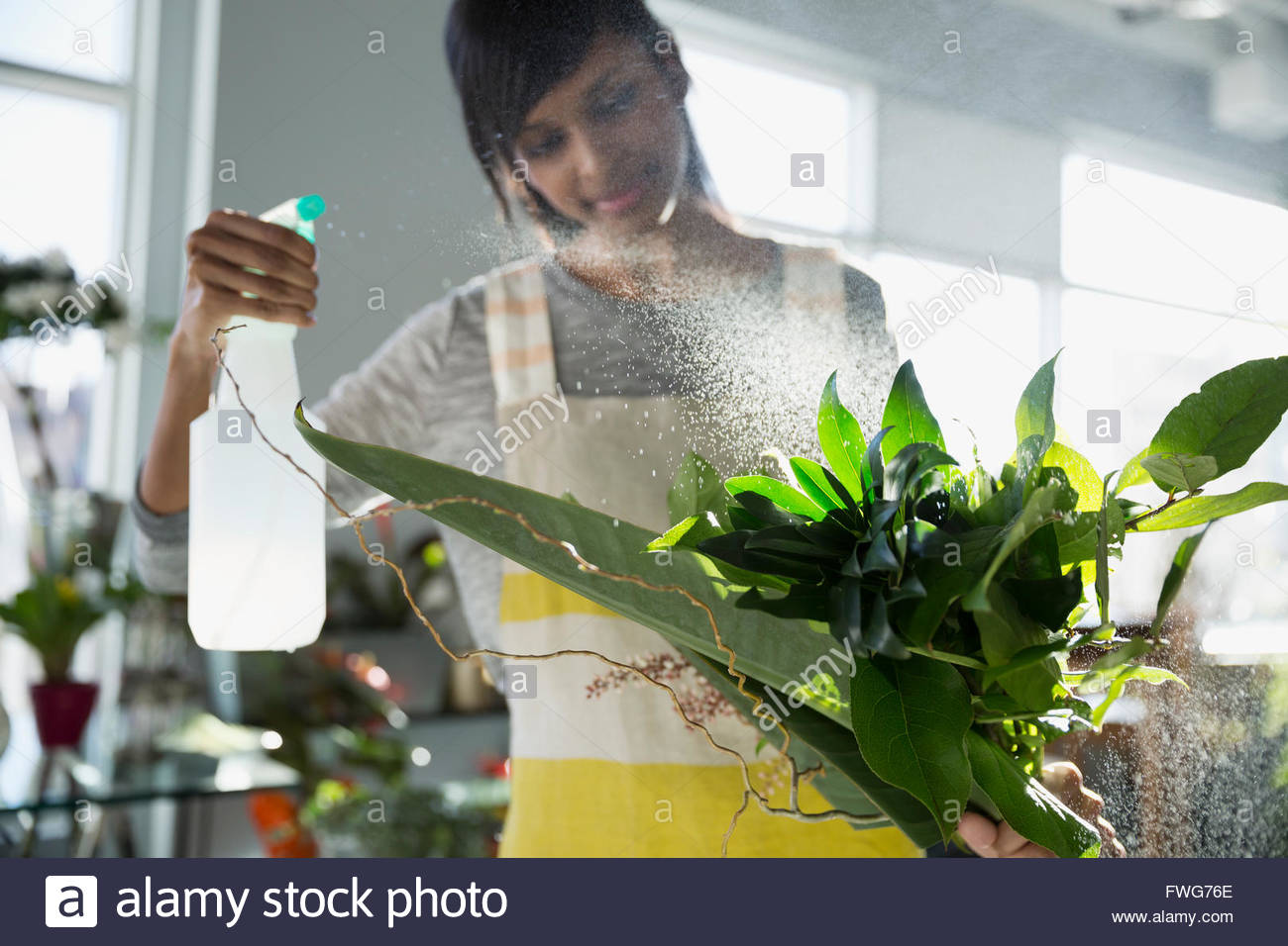 Beschlagen Blätter mit Wasser im Blumenladen Blumengeschäft Stockbild