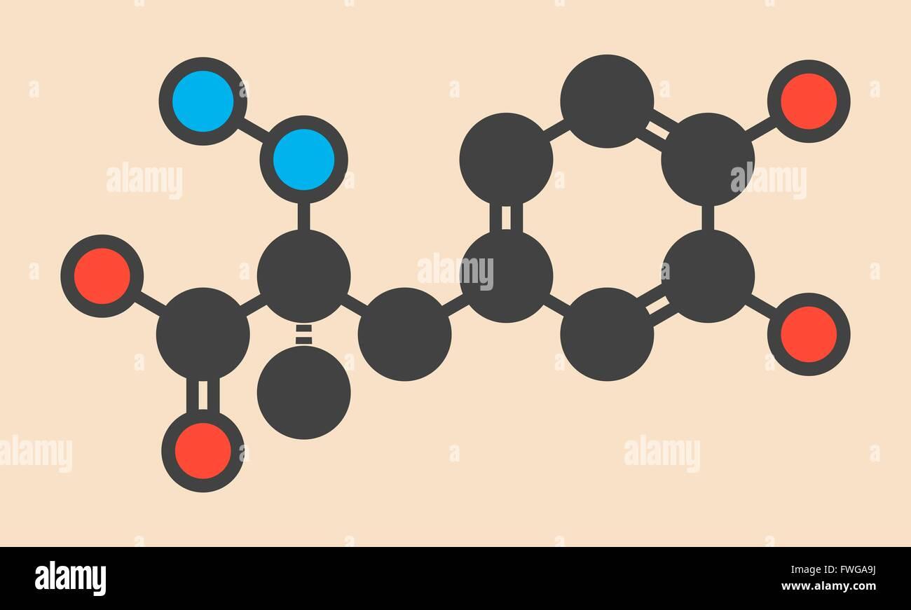 Carbidopa Parkinsons Krankheit Medikament verhindert, dass periphere Aufschlüsselung der Levodopa ermöglicht Stockbild