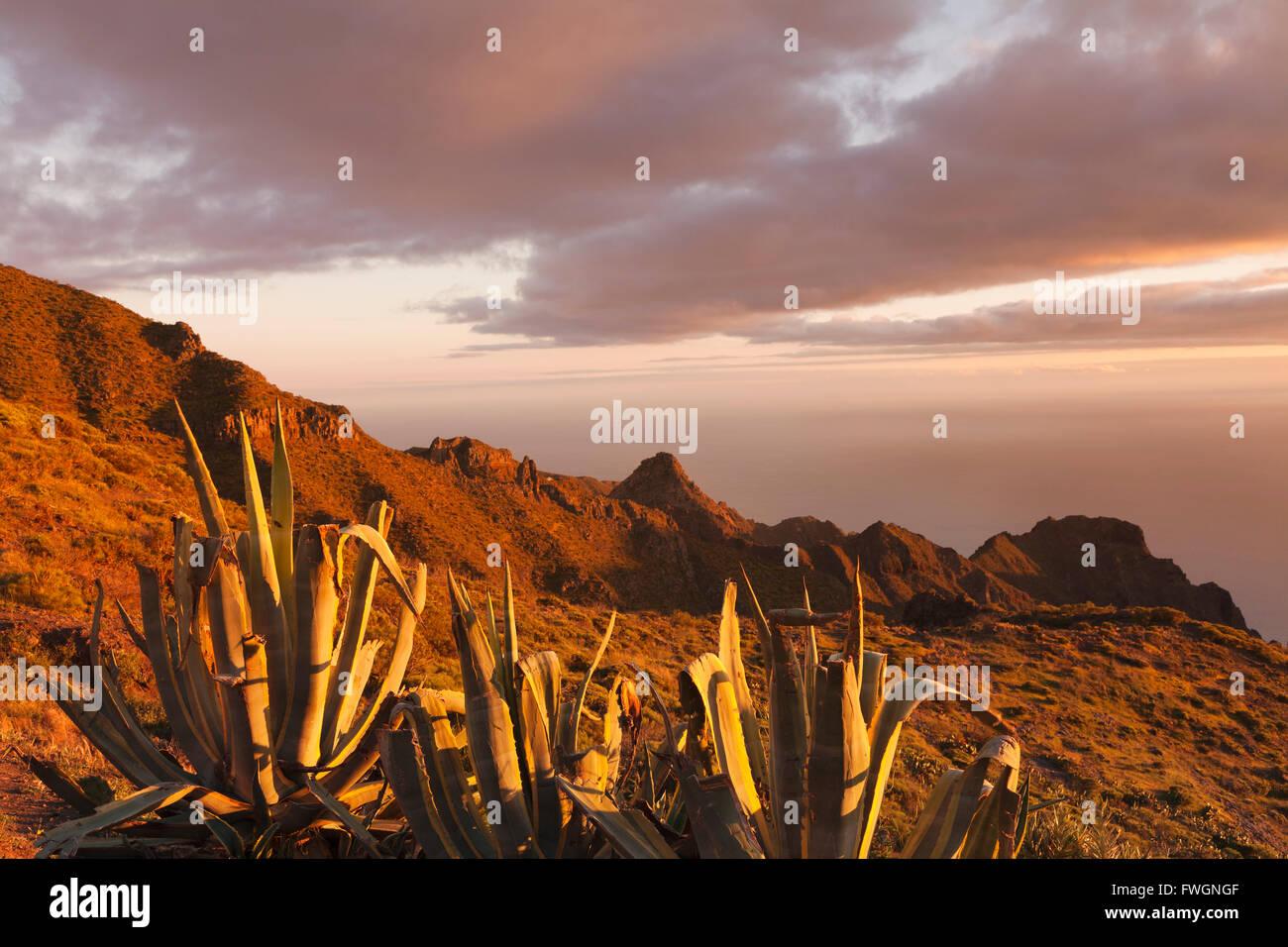Teno-Gebirge bei Sonnenuntergang, Teneriffa, Kanarische Inseln, Spanien, Europa Stockbild