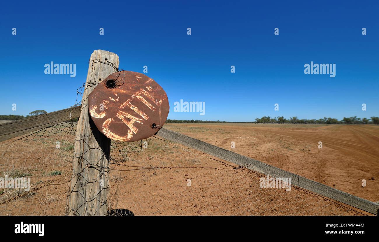 Australia Outback Cattle Stockfotos & Australia Outback Cattle ...