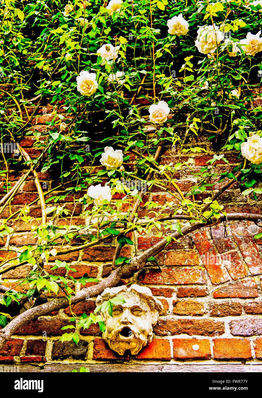 Gemauerte Wand in einem prominenten Garten mit Blumen Stockfoto ...