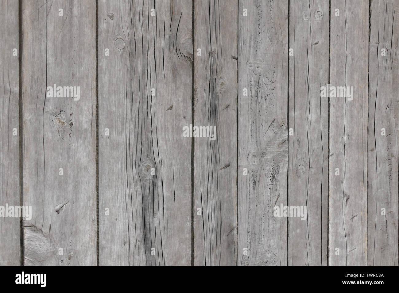 eine wand aus kiefer-dielen stockfoto, bild: 101932778 - alamy