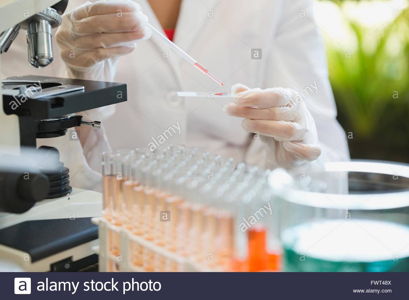 Mittelteil des Wissenschaftlers Prüfung Probe im Labor Stockbild