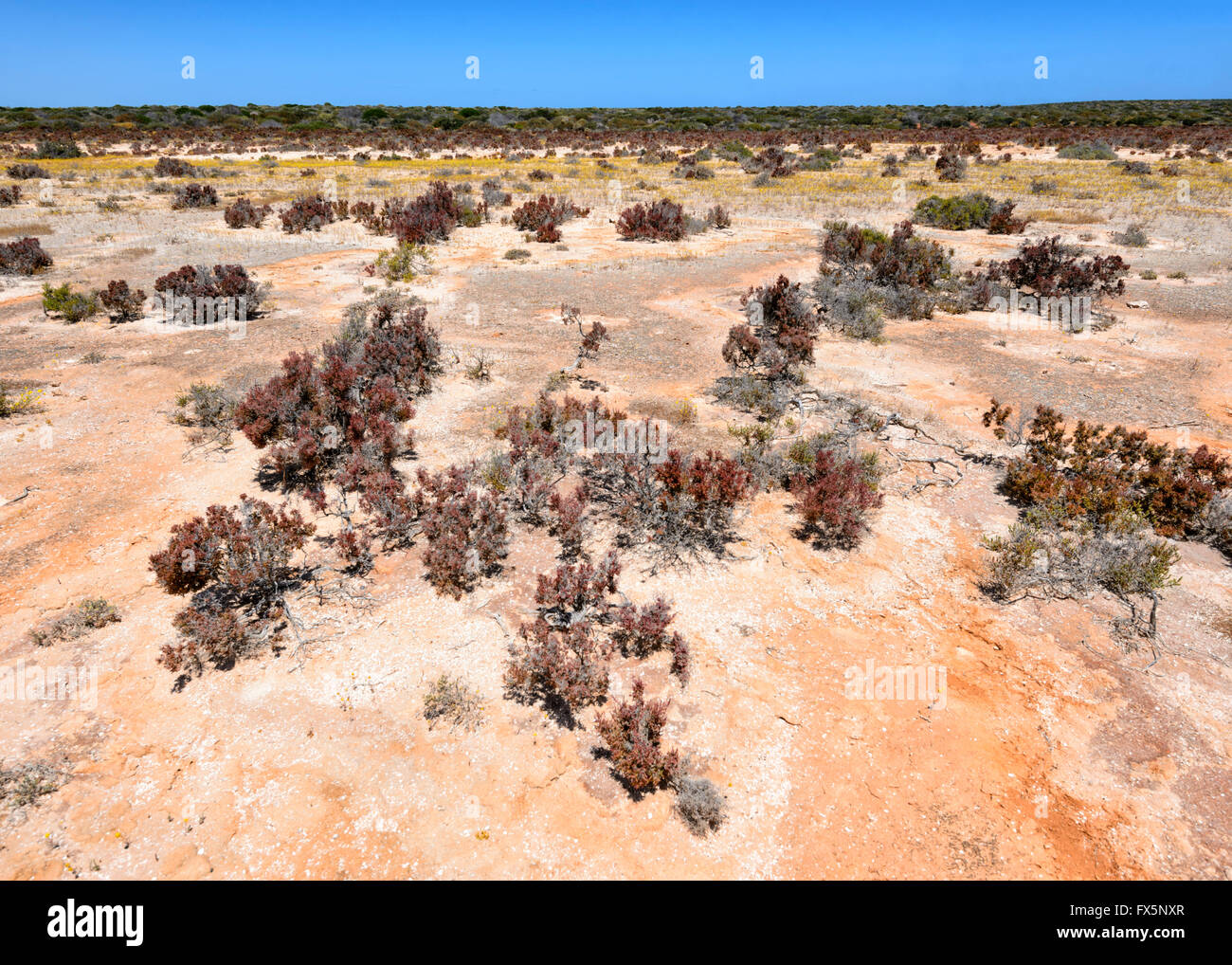 Öden trockenen Land der North West Küste von Western Australia, WA, Australien Stockbild