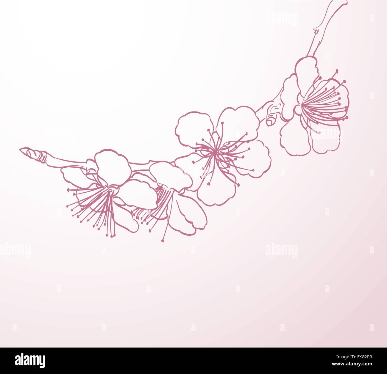 blühender Baum Blumen Linie Kunst Handzeichnung. Frühling stilvollen ...