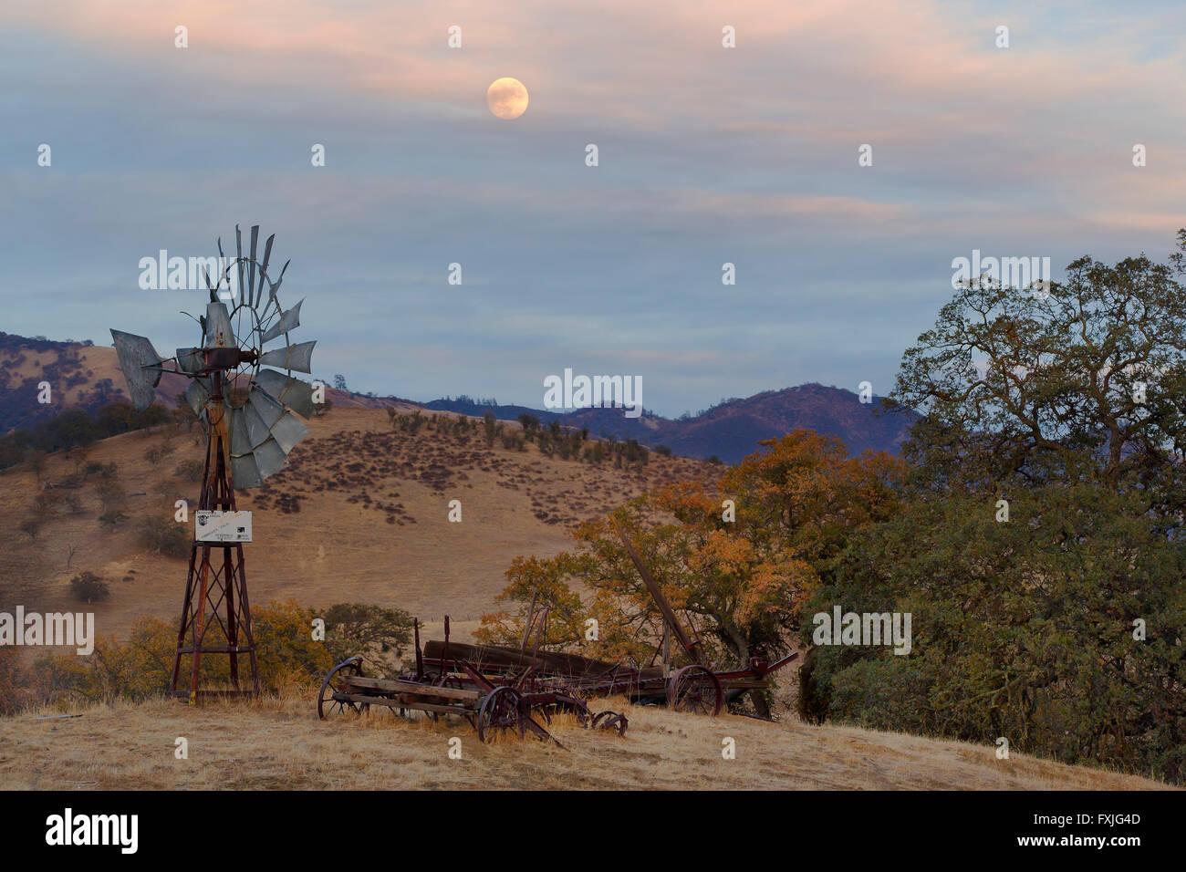 Mondaufgang und Windmühle Stockbild