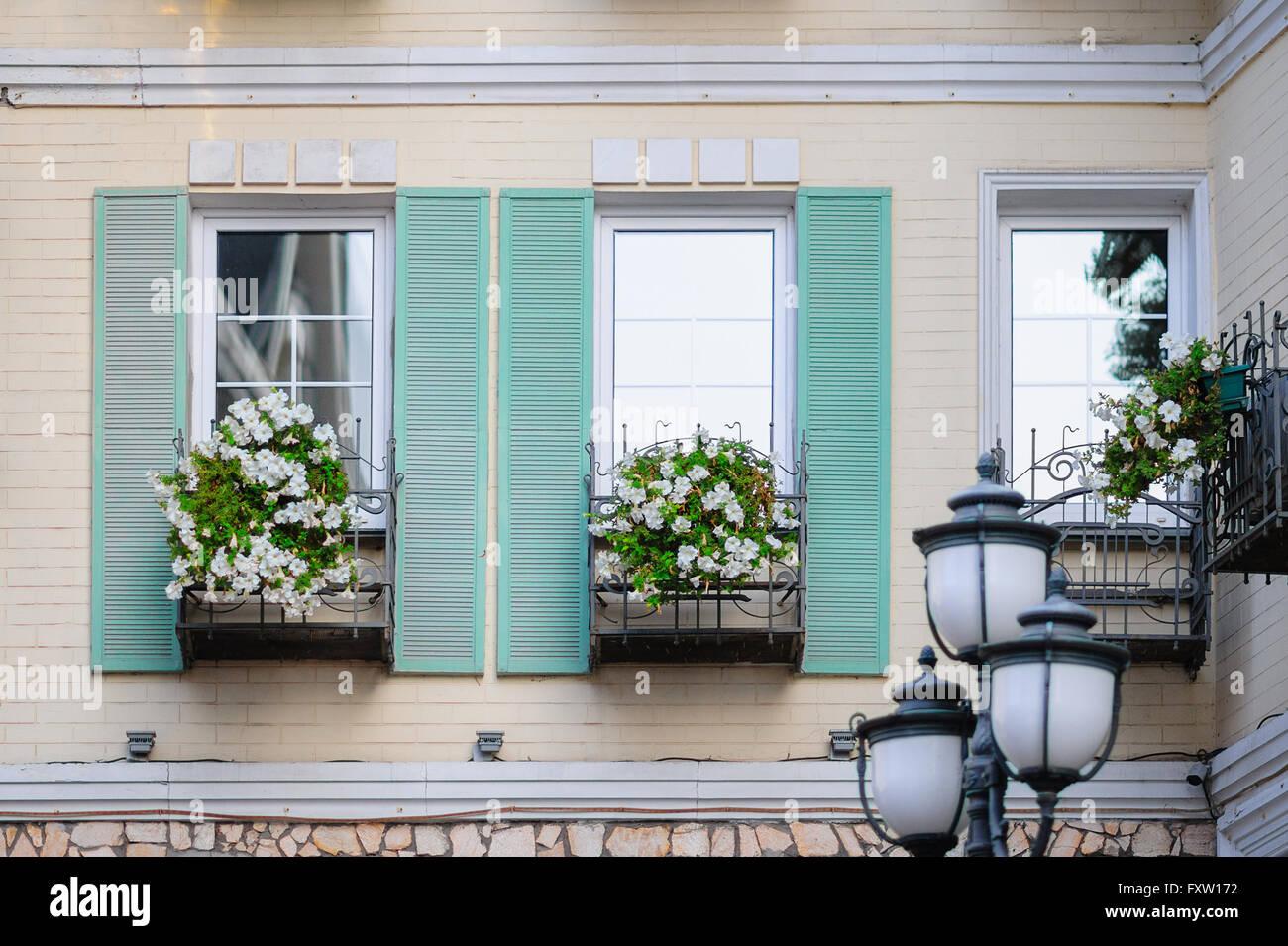 Weisse Blumen Auf Einem Balkon Vor Dem Fenster Stockfoto Bild